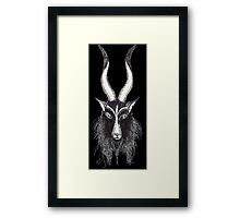 Long Horns Goat Framed Print
