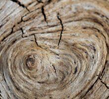 Driftwood Details Sticker