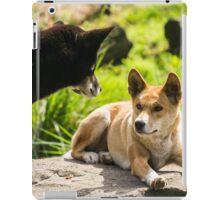Two Dingo's iPad Case/Skin
