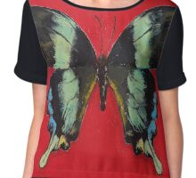 Peacock Swallowtail Butterfly Chiffon Top
