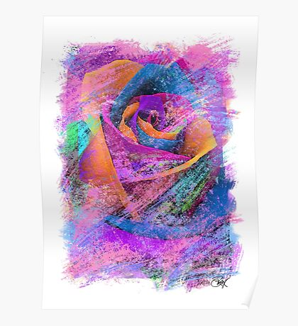Love Is A Rose Poster