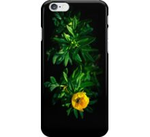 Nutrition [Recommended: iPod Touch ONLY] iPhone Case/Skin