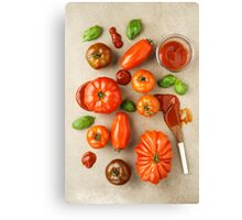 Tomatoes for tomato ketchup Canvas Print