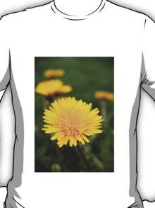 Dandelion ~ Taraxacum T-Shirt