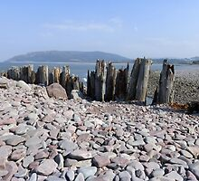 Porlock Weir, Somerset by trish725
