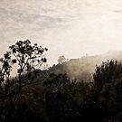 Mount Ainslee in the Fog (5) by Wolf Sverak