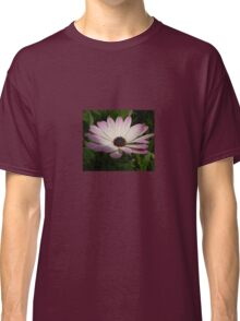 Side View of A Pink and White Osteospermum Classic T-Shirt
