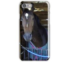 Horse Show Happy Man   iPhone Case/Skin