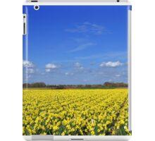 Daffodil fields in Hampshire, England iPad Case/Skin