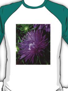 Starlight Blue Aster T-Shirt