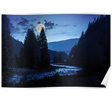 forest river with stones and moss at night Poster