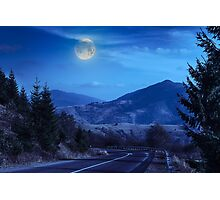 pine trees near valley in mountains and autumn forest on hillside at night Photographic Print