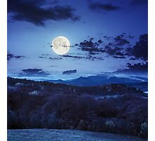 mixed forest near valley in mountains  on hillside at night Photographic Print