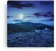 light on stone mountain slope with forest at night  Canvas Print