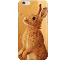 a bunny named milo iPhone Case/Skin