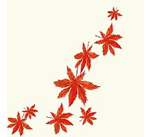 falling red maple leaves watercolor painting  Photographic Print