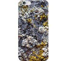 White and Yellow Lichen iPhone Case/Skin