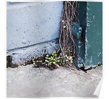{ Corners: where the walls meet #15 } Poster