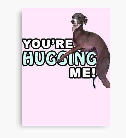 Youre Hugging Me! - Kermit, Jenna Marbles Canvas Print