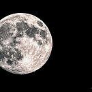 Full Moon Rising by jules572