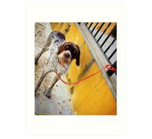 El Perro en Espana Art Print