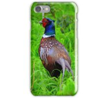 The beauty and the pest. iPhone Case/Skin