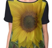 Windswept Sunflower Chiffon Top