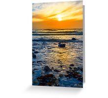 kelp at rocky beal beach Greeting Card