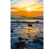 kelp at rocky beal beach Photographic Print