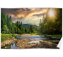 forest river with stones at sunset Poster