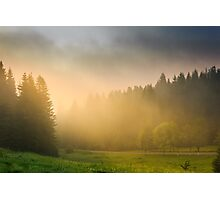 sun rays breaking through the clouds and fog in forests Photographic Print