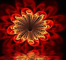 Fire Flower by Pam Amos