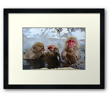 Snow Monkeys Japan Framed Print