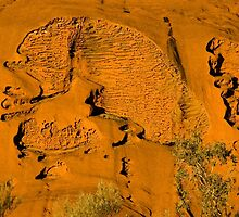 Uluru Rock Textures by Dilshara Hill