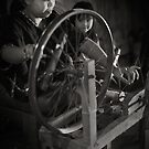 The Spinning Wheel by Mieke Boynton