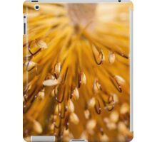 Golden Brush iPad Case/Skin