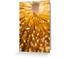 Golden Brush Greeting Card