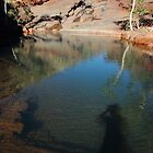 leaving my shadow spirit in the Pilbara by gaylene