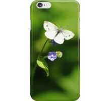 Forget-Me-Not Butterfly iPhone Case/Skin