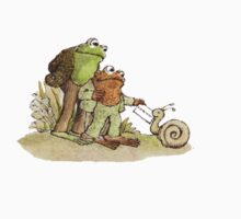 Frog & Toad by dandalar