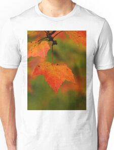 The wind in trees will soon take me down but enjoy me while I'm here. For all we know, we have one shot at life. Live it the best you can and be happy. T-Shirt