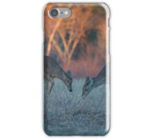 Spirits of the North Woods 3 iPhone Case/Skin