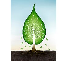 Green leaf shaped tree growing from earth concept art photo print Photographic Print