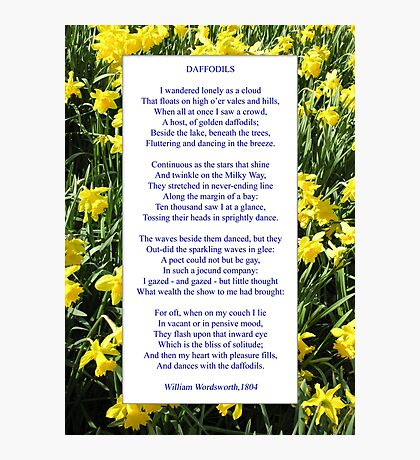 """Wordsworth's """"Daffodils"""", especially good as a card. Photographic Print"""