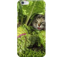 Green is good for the eyes... well, have you ever seen a Rabbit with Glasses? iPhone Case/Skin