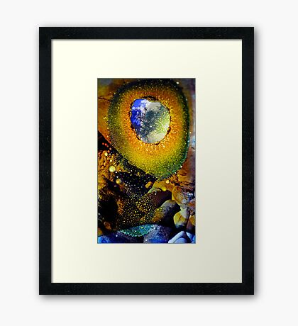 Eye Witness Framed Print