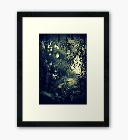 Those Who Don't Believe In Magic Will Never Find It Framed Print