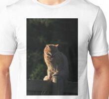 Ginger cat snarling on garden fence Unisex T-Shirt
