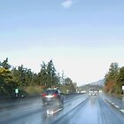 Highway 1 Leaving Victoria BC by AnnDixon