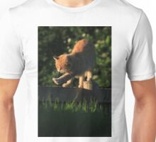 Ginger cat stretching on garden fence Unisex T-Shirt